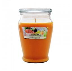 Grapefriut & Mango - Duża...